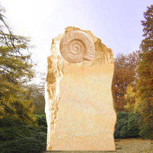 Robinson Grabstein Felsen mit Ammonit