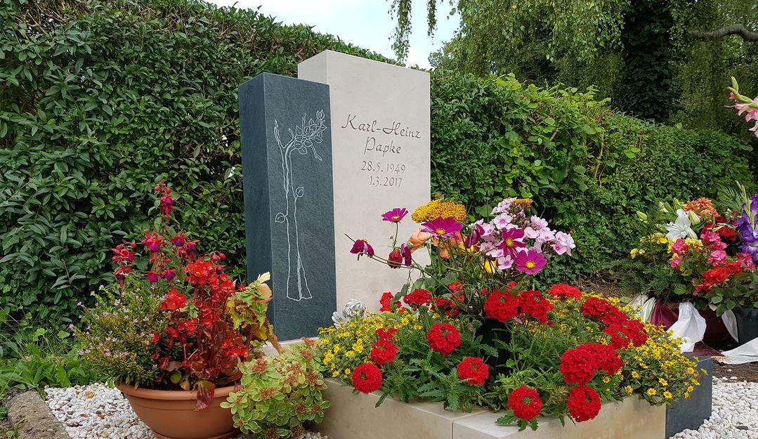 Lieblings Friedhofsblumen- & Pflanzen (Frühling, Sommer, Herbst, Winter #AS_49