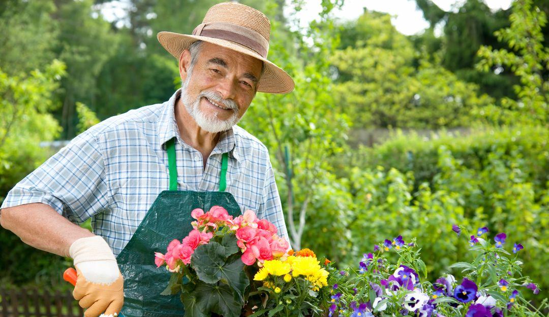 Die Blumenpflege ist wichtig für ein harmonisches Bild auf dem Friedhof.   Bildquelle: © Alexander Raths - Fotolia