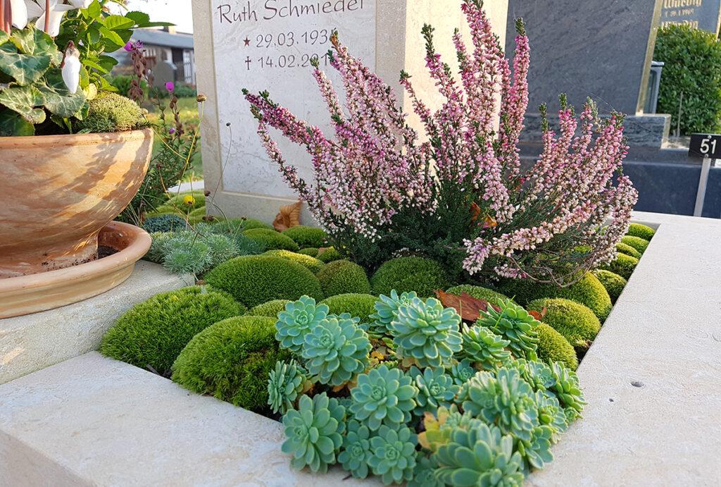 Friedhofspflanzen Grabpflanzen für einen schattigen Standort