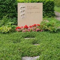 Doppelgrabstein Familiengrabstein Moderne Grabbepflanzung Bodendecker Pflanzen pflegeleicht Familiengrab Doppelgrab Grabstein Arzt Mediziner Kalkstein Jena Nordfriedhof