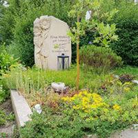 Grabgestaltung modern Sommer Bodendecker Grabpflanzen Sonnenblume Grabstein Steinmetz Hochheim Erfurt Friedhof