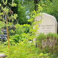 Sommerliche Grabgestaltung Grabbepflanzung Beispiele Ideen Bodendecker Einzelgrab Erfurt Hochheim Friedhof