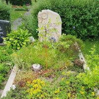 Einzelgrabgestaltung Pflanzen Bodendecker Sommer Grabbepflanzung modern Beispiele Erfurt Hochheim