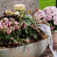 Grabschmuck Grabdeko Blumen Pflanzschale Grab Deko