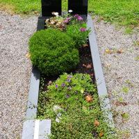 Grabbepflanzung im Sommer immergrün Beispiele Ideen Fotos Bilder Grabeinfassung Einzelgrab Friedhof Ronshausen