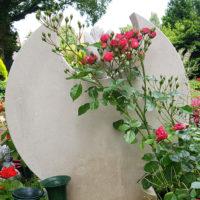 Grabstein Grabbepflanzung Rosen Rosenstrauch Rote Rosen Grabgestaltung Bepflanzung Sommer Grab Kindergrab Junge Menschen Beispiel Friedhof Benz Usedom Insel
