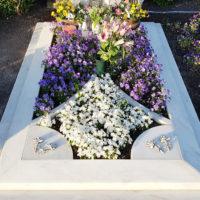 Grabbepflanzung einzelgrab Einzelgrabstätte modern Einfassung Marmor Pflanzen Blumen Beispiel Einteilung