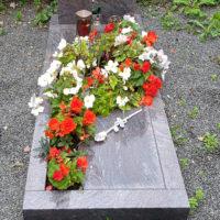 Grab bepflanzen Ideen Grabbepflanzung Sommer Blumen Beispiele Bilder Fotos Pflanzen Einzelgrab Platte Einfassung Granit