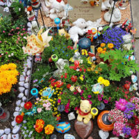 Kindergrab Gestalten Grabschmuck Grabdeko Grab für Kinder Bepflanzung Steinmetz Erfurt Friedhof