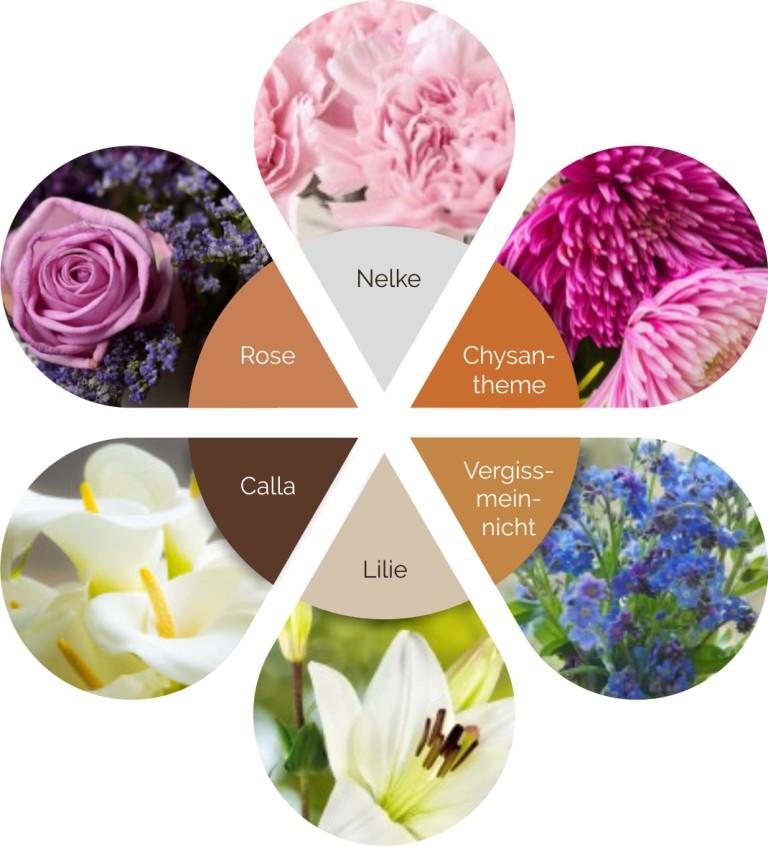 Blumen - Schnittblumen - Trauerblumen für das Grab und den Friedhof