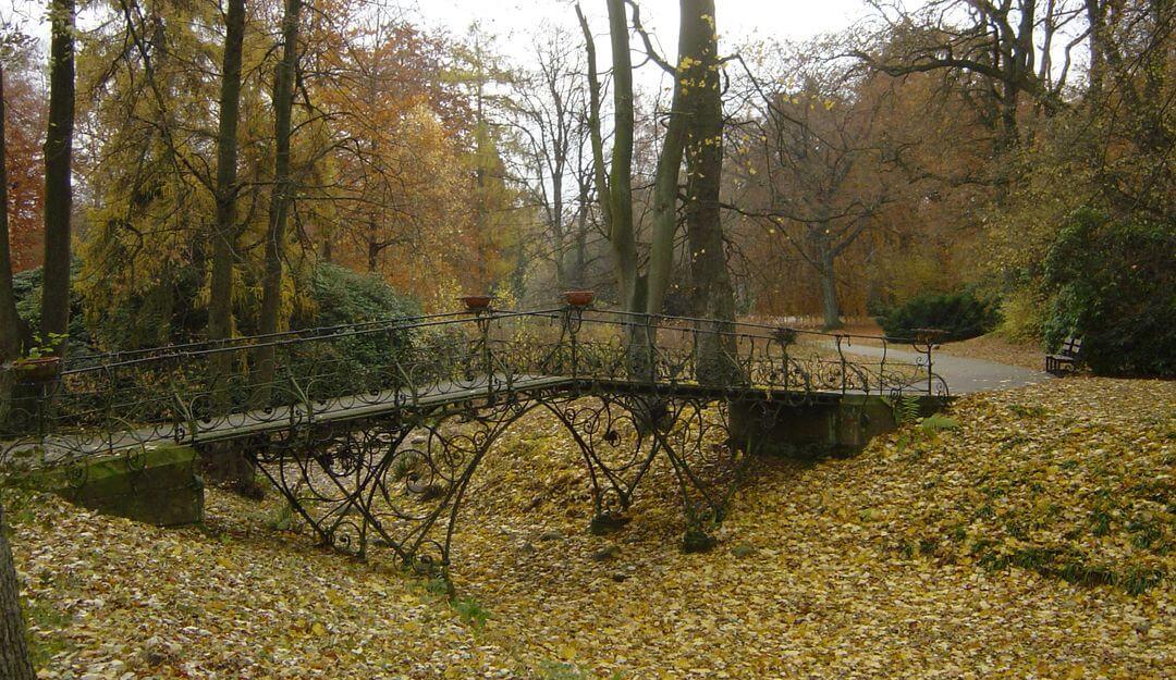 Ein Waldfriedhof zeichnet sich durch seine Naturbelassenheit aus. | Bildquelle: ©Stilvolle Grabsteine