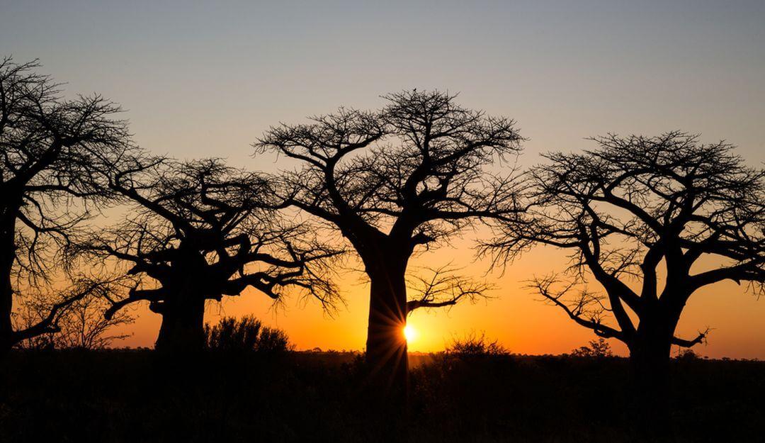 Die Menschen in Afrika glauben daran, dass sie nach dem Tod wiedergeboren werden. | Bildquelle: © Reto - Fotolia