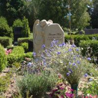 Grabgestsaltung Stauden Engel Grabstein Grabmal Grabengel Einzelgrabstätte Insel Rügen Steinmetz Gingst
