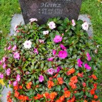 Bepflanzung Urnengrab Blumen Beispiel Idee Vorschlag