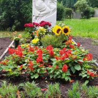 Blumen Grab Friedhofsblumen Friedhofsbepflanzung Sommer Gestaltung Grab Beispiele Ideen Vorschläge Engel Grabsteine kaufen Berlin Steinmetz Friedhof