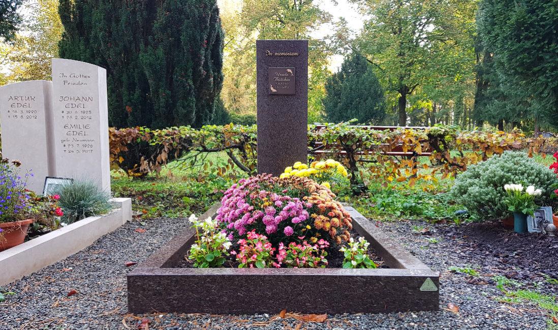 Grabstein Urnengrab Urnengrabstein Umrandung Schriftafel Bronze Grabbepflanzung Herbst Idee Steinmetz Gera Südfriedhof