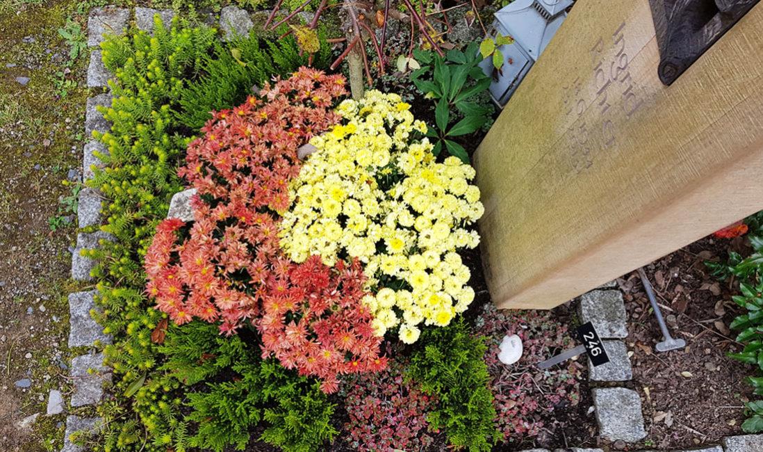 Grabbepflanzung Urnengrab Bodendecker im Sommer Herbst Beispiel Idee Foto Grabgestaltung