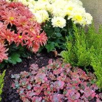 Urnengrab Pflanzen Friedhofspflanzen Grabpflanzen Beispiel Idee Bodendecker
