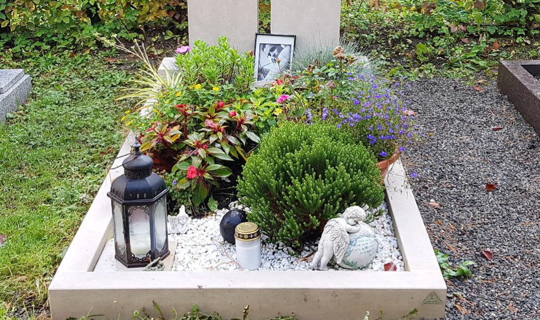 geteilt Grabmal Kalkstein Familiengrab Südfriedhof Gera Bepflanzung