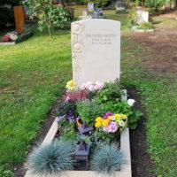 Sandstein Einzelgrabstätte mit Einfassung Grabstein Motive Sonnenblume Kalkstein Bepflanzung Grab Ziergras Grabschmuck Deko Blumen Dresden Trinitatisfriedhof