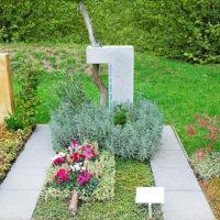 Grabstein Mustergräber Landesgartenschau Apolda Grabgestaltung Einzelgrab Bodendecker pflegeleichte Bepflanzung
