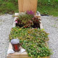 pflegeleichte Grabgestaltung im Herbst mit Efeu Bodendecker Wechselbepflanzung Beispiel Steinmetz Friedhof Greiz