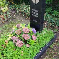 Beispiel für eine pflegeleichte Grabbepflanzung im Sommer mit Bodendeckern und Immergrüner Bepflanzung