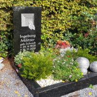 Urnengrab Gestaltung mit Grabstein & Einfassung Grabbepflanzung Kies Blumen Koniferen Deko Friedhof Zeulenroda