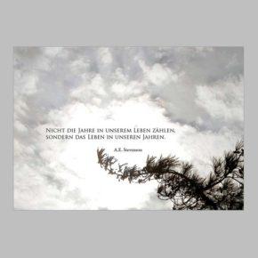 Trauerkarte Beileidskarte Richtig Schreiben 20 Muster Beispiele