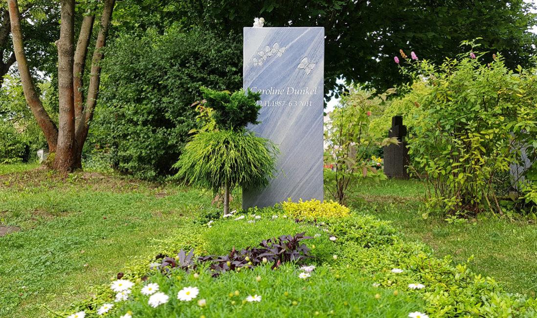 Grabstein Marmor Schmetterling blau Einzelgrab Bepflanzung Sommer Bodendecker pflegeleicht Friedhof Neustadt Orla