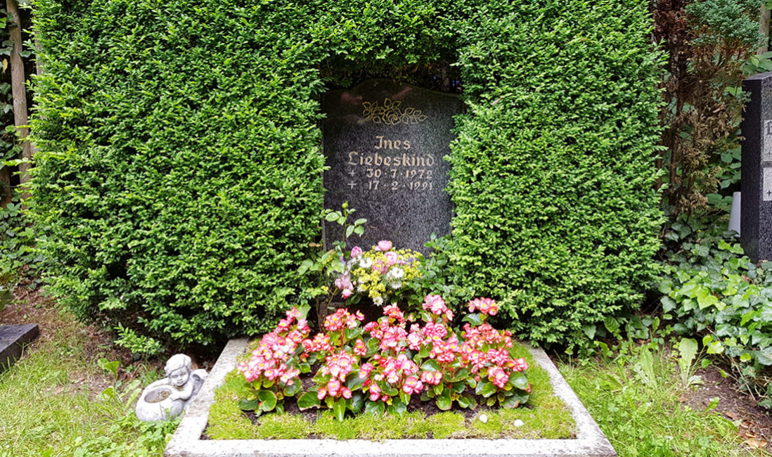 Urnen Grabmal Granit Hecke Buchsbaum Einrahmung eingewachsen Blumen Bepflanzung Sommer Bodendecker Grabeinfassung Friedhof Cospeda