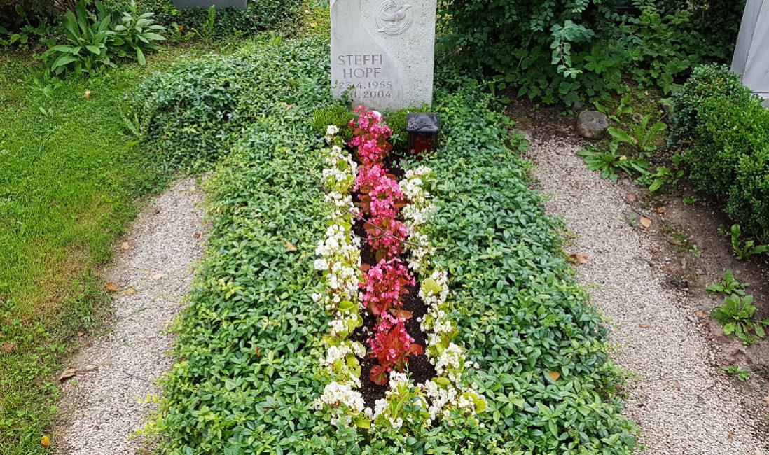 Einzelgrabanlage Grabstein Bodendecker Grab Grabbepflanzung Sommer Friedhofsgärtner Neustadt Orla