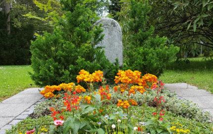 Erfurt Hauptfriedhof Mustergrabstein heller Granit mit Baum