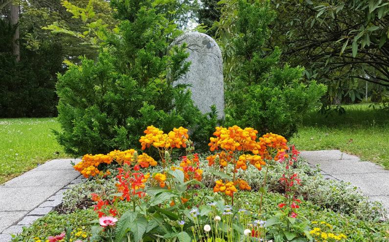 Erfurt Hauptfriedhof Mustergrabstein heller Granit mit Baum - 1