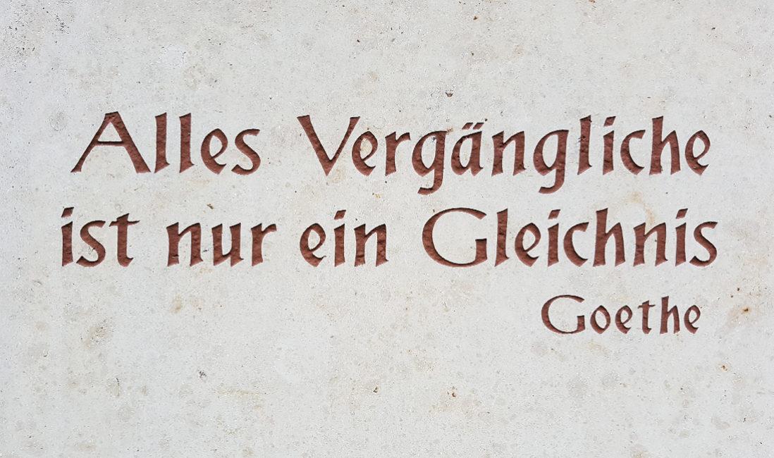 Urnengrabstein Doppelgrab Grabeinfassung Kalkstein rustikal Fels Bronzefigur Gingko Bronze Grabgestaltung Buchsbaum Bodendecker Gräser Blumen Grabbepflanzung Frühjahr Sommer Herbst Winter Erfurt Friedhof Riechheim