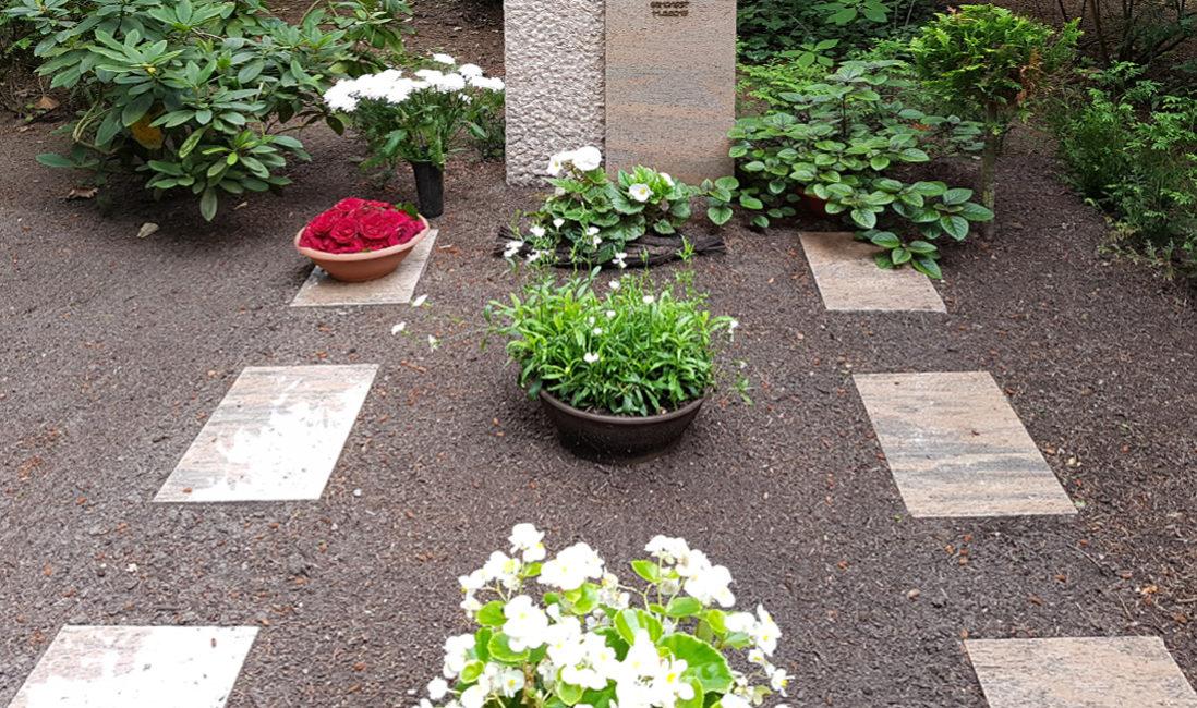 Geteilter Grabstein Doppelgrab Granit Stele Öffnung Bronze Blätter poliert gehauen rustikal Grabgestaltung pflegeleicht Grabbepflanzung Friedhof St. Bartholomaei Demmin