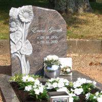 Grabstein Einfassung Umrandung Platten Sonnenblume poliert Bepflanzung Blumen weiß Sommer Steinmetz Weiskirchen Friedhof