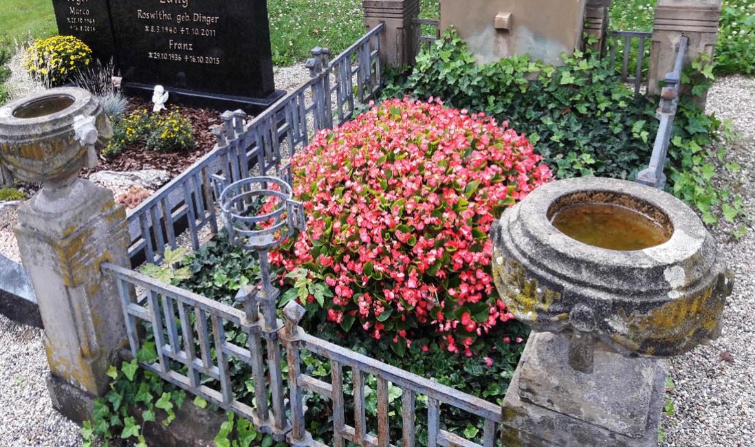 Grabanlage Familiengrab Grabeinfassung Zaun Bronze Sandstein Urne Grabbepflanzung Sommer