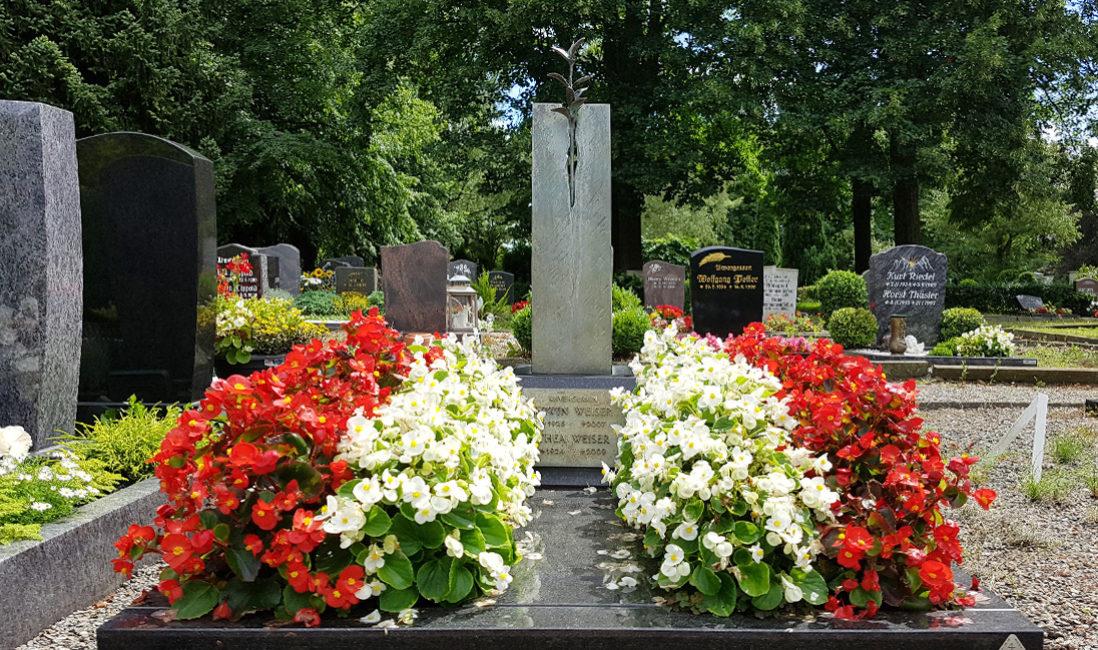 Grabstein Urnengrabstätte Bronze Skulptur Blumen Sommerbepflanzung Grababdeckplatte Friedhof Weida