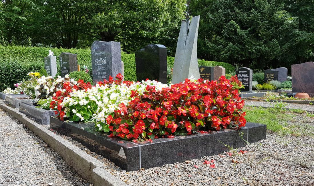 Grabstätte Urnengrab Grabeinfassung Granit Bronze Grabgestaltung Blumen Friedhof Weida
