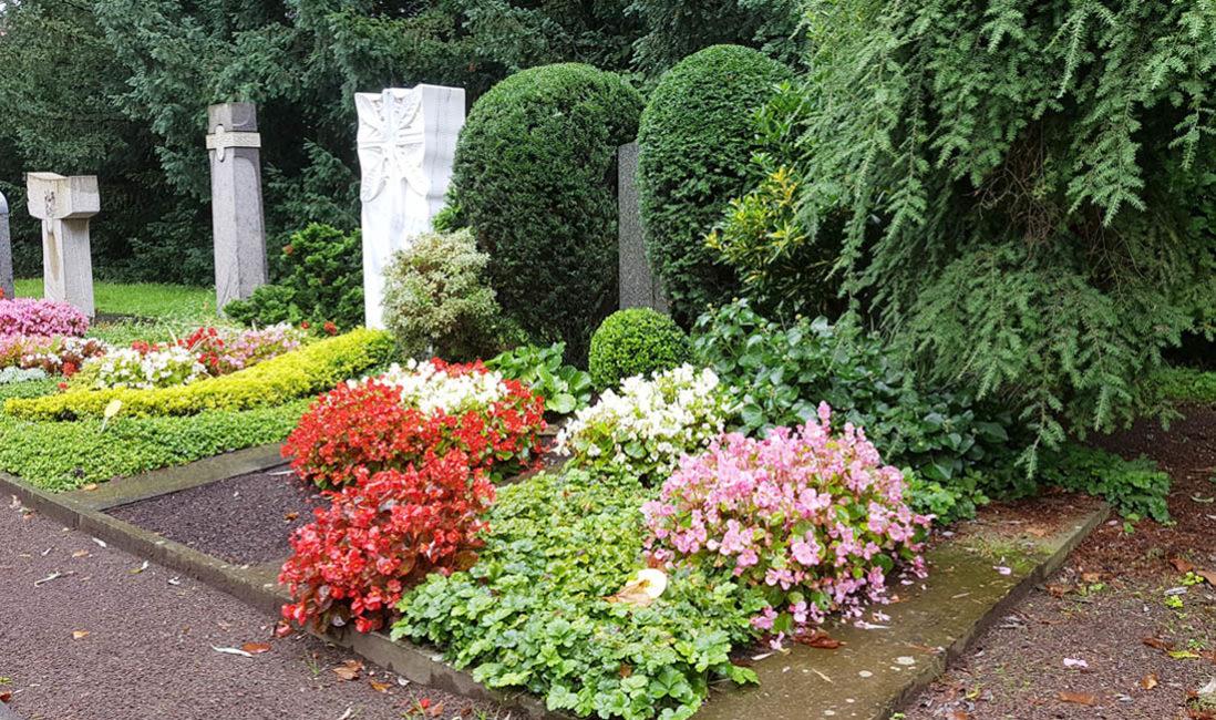 Grabmal Säule Einzelgrab Grabbepflanzung Bodendecker Blumen Sommer Südfriedhof Köln