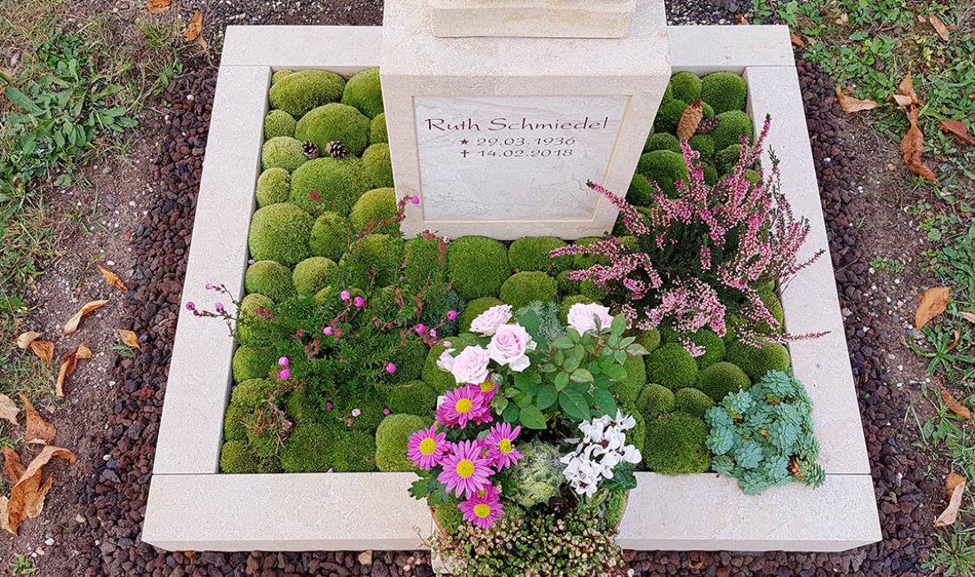 Grabeinfassung Sandstein Grabbepflanzung Herbst Winter Moos Bodendecker