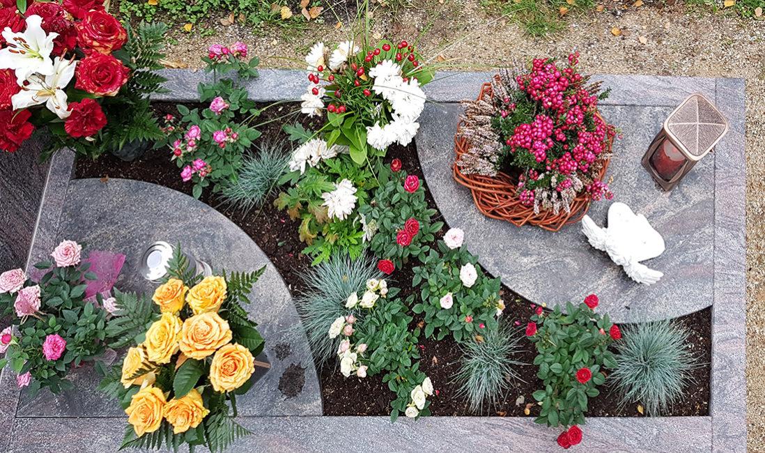 Grabstätte Einzelgrab Grabumfassung Granit Grabplatte Grabgestaltung Blumen Grabbepflanzung Herbst Friedhofsgärtner Frankfurt