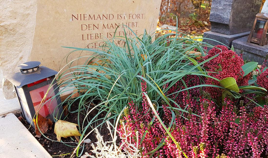 Grabschmuck Grabinschrift Grabspruch Grabpflnzen Gras Herbst Heidekraut