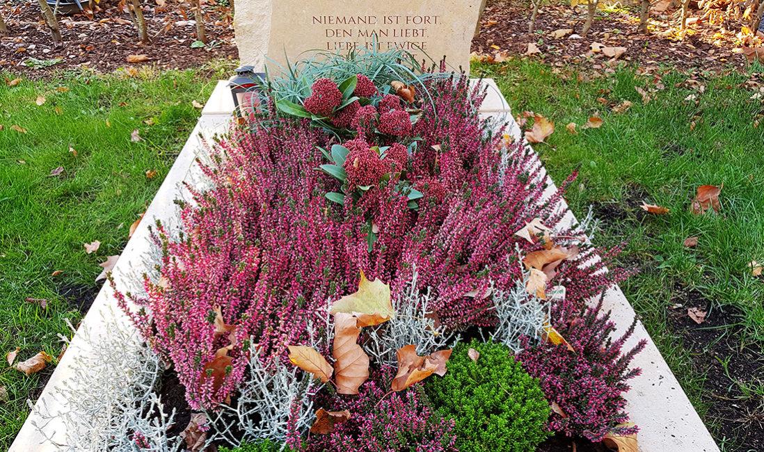 Grabmal Fels Grabbepflanzung Idee Herbst Stauden Blumen Heide München