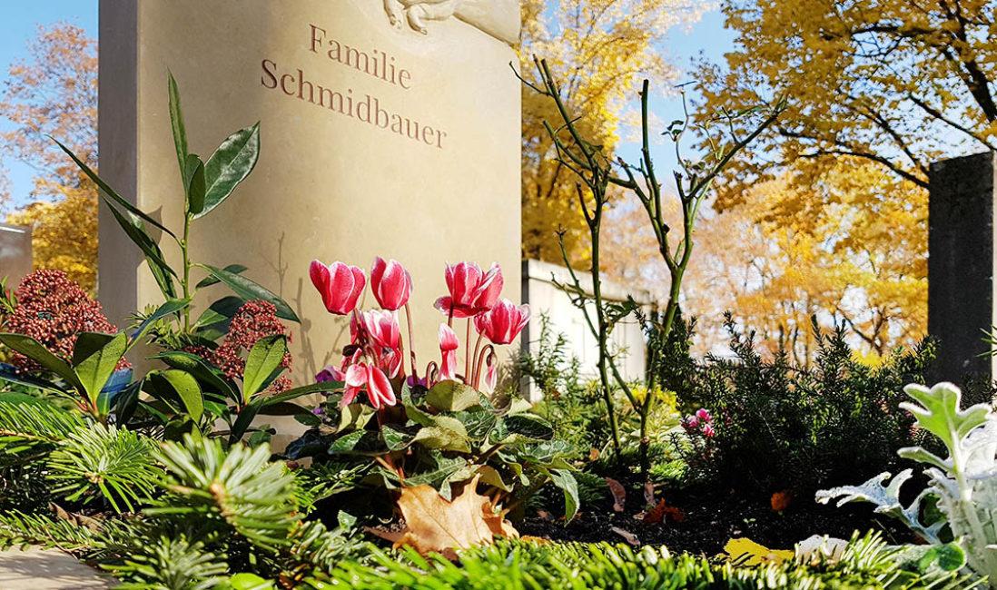 Grabbepflanzung Herbst Grabstein Kalkstein Alpenveilchen Friedhof Fürth
