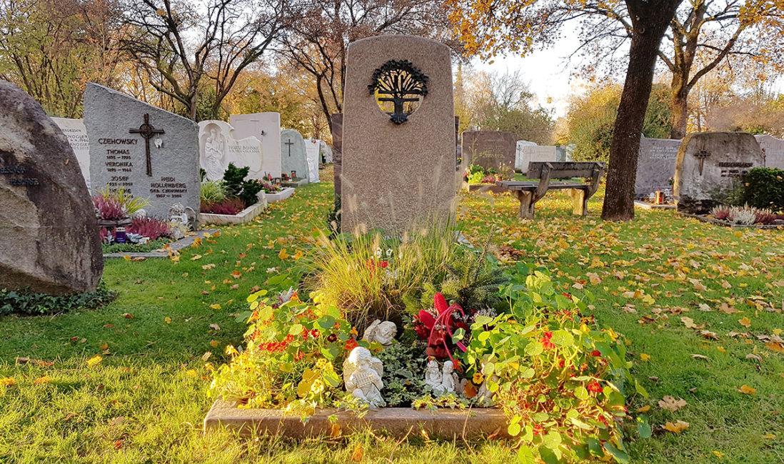 Grabstein Einzelgrab Granit Einfassung Öffnung Kreuz Lebensbaum Bronze Ornament Grabgestaltung Floral Bepflanzung Blumen Friedhof Vaterstetten