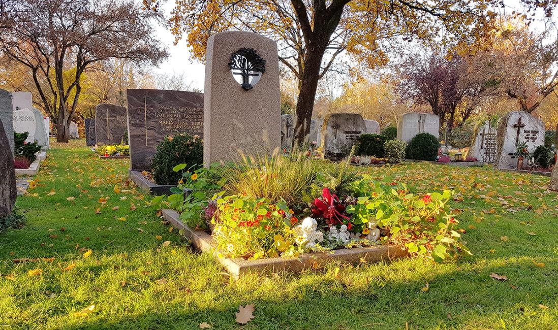 Grabmal Einzelgrabstein Granit Modern Loch Bronzeornament Grabumfassung Grabbepflanzung Blumen Gräser Herbst Friedhof Vaterstetten