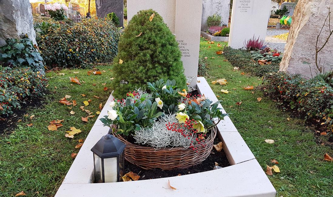Grabpflanzen Grabgestaltung Ideen Beispiele Bäumchen Nadelbaum Herbst Winter Friedhofsgärtner Vaterstetten